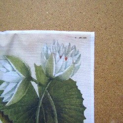 Ready Fabric Panel - Water Lily in Botanical  style