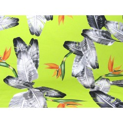 Tropical print fabric  Giant Banana Leaves & Strelizia flower